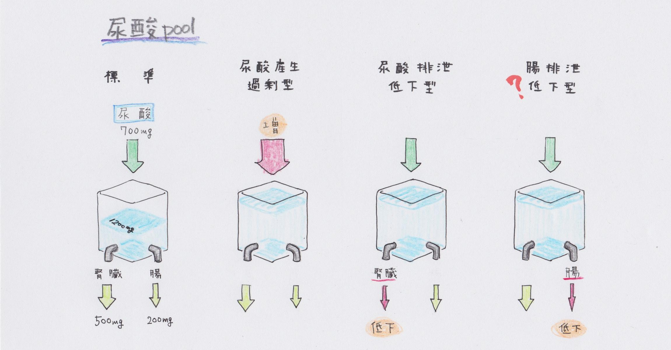 尿酸プール